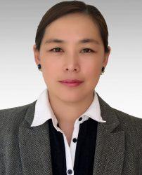 Fei Du - företaget